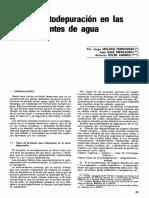 Autodepuración del Agua (articulo).pdf