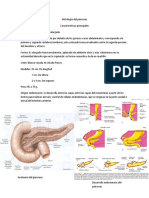 Cáncer de Cuello Uterino (Cervical)