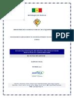 Rapport Final Etude Diagnostique Des Besoins Des Producteurs en Outils de Gestion
