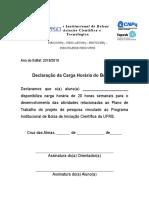 Modelo Declarao Carga Horria2018 2019