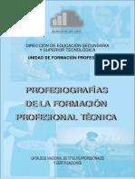 248676769-MINEDU-M-Profesiografias-de-la-Formacion-16-11-09-pdf.pdf