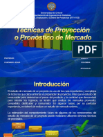 tecnicasdeproyeccionypronosticodemercado-130505194136-phpapp01.pdf