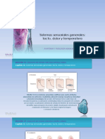 6. Anatomía y Fisiología de Los Sentidos (1)