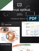 Nervus Optikus
