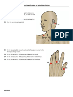 Key_Sensory_Points.pdf