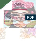 Agenda 2018 2019 Frida Directora