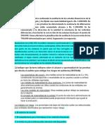 Guia de Auditoria 2.1.docx