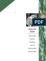 [LAND_ROVER]_Esquemas_de_circuitos_electricos_Land_Rover.pdf