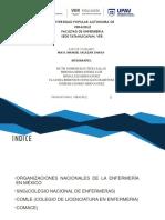 ORGANIZACIONES NACIONALES EQUIPO 4.pptx