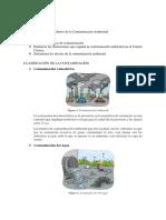 EFECTOS-DE-LA-CONTAMINACIÓN-AMBIENTAL.docx
