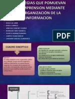 Estrategias Que Promueven La Comprension Mediante La Organización (1)