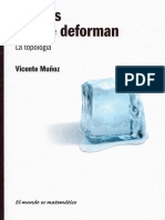 Formas Que Se Deforman - Vicente Muñoz