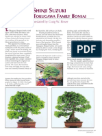 Suzuki Pine Article