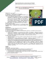 41RED DONAR 2009 RECURSO Ejemplo de Secuencia Didactica
