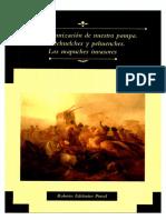 La Araucanizacion de Nuestra Pampa