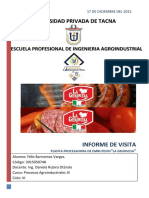 294207074-INFORME-de-Visita-Genovesa.docx