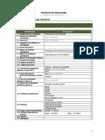 Anexo 4 Formato Para Elaboración de Proyectos