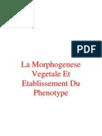 La Morphogenese Vegetale