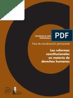 Las Reform as Constitucion a Lesen Materia De