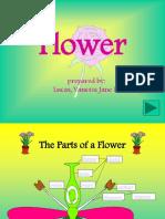 Flower-lucas, Vanessa Jane d.