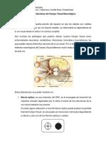 Caracteristicas Del CV en Neurooftalmologia