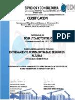 Certificado Entrenamiento Dora Lyda Hoyos Trejos Cc 24812132