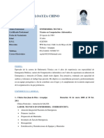 Curriculum de SAIDA