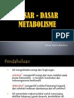 Dasar - Dasar Metabolisme