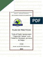 Formato de Plan de Practicas
