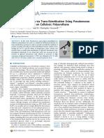 Biodiesel Production via Transesterification