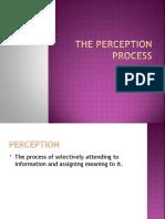 Perception Process(9&10)