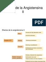 Efectos de La Angiotensina II