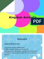 kingdom-animalia.ppt