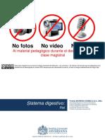 HISTOLOGÍA PIEL.pptx