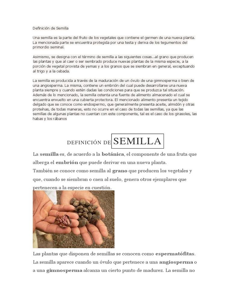 Definición de Semilla