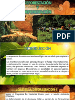 Deforestación y Reforestación -Mik