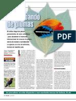 Gatti, Ibáñez & Bertonatti (2018) - Contrabando de Plumas (Rev Week End - Junio 2018)