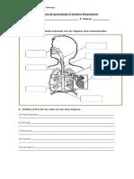 Guía de Aprendizaje El Sistema Respiratorio