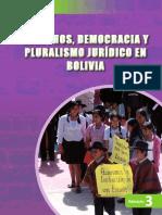 [Cartilla] FT Derechos, Democracia y Pluralismo Jurídico (2013)