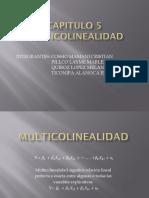 Capitulo_5_MULTICOLINEALIDAD..