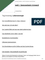 wurzeln nervennahrung nierenstärkung Lebensenergie _ architektur, umwelt + bewusstsein Irmgard Brottrager
