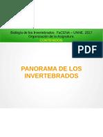 1.- Panorama de Los Invertebrados