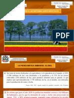 Anexo 9. Presentacion Sistemas Agroforestales