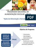 Acoes de Alimentacao e Nutricao Pnae