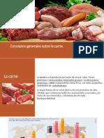 Conceptos Generales de La Carne