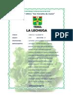 Monografia La Lechuga