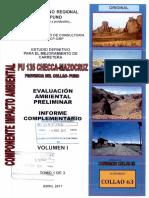 01 Evaluacion Ambiental Informe Complementario 1 de 3
