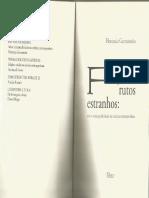 Florencia Garramuño - A literatura fora de sí