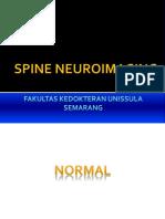 4. Neuroimaging Kelainan Vertebra (dr. Bekti).pptx