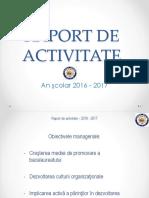 Raport activitate